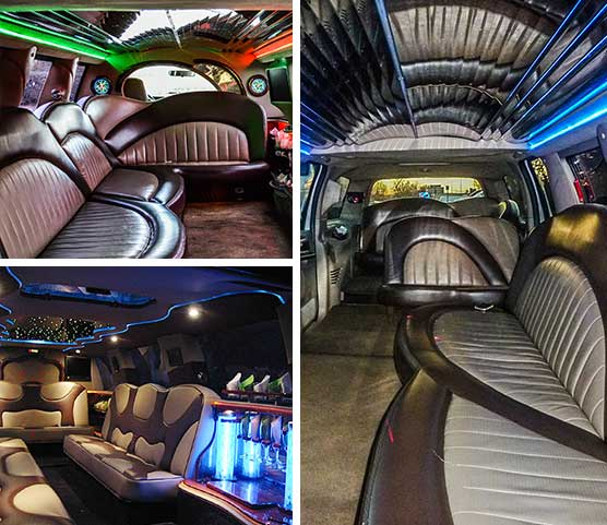 14 Pax Excursion Limo
