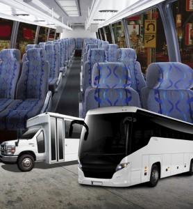dc tour buses